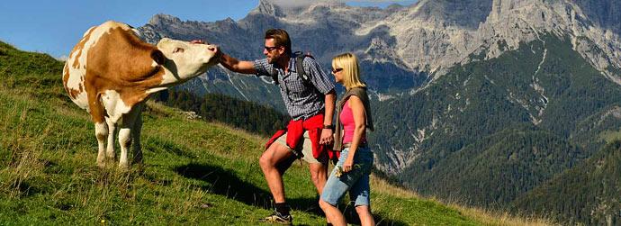 Wandern in den Alpen, Paar auf der Alm